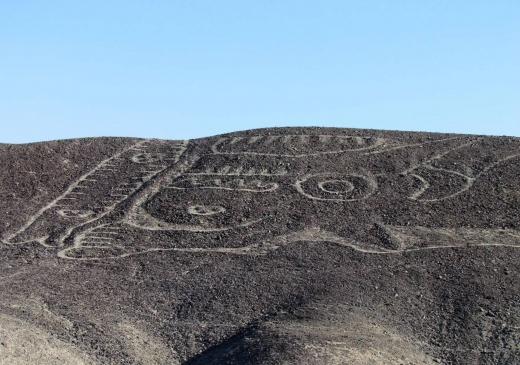 秘鲁沙漠中发现230英尺长神秘的虎鲸地画